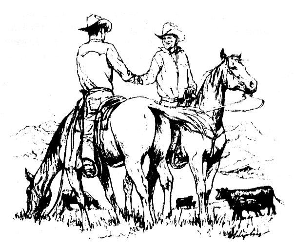 Cowboy Partner